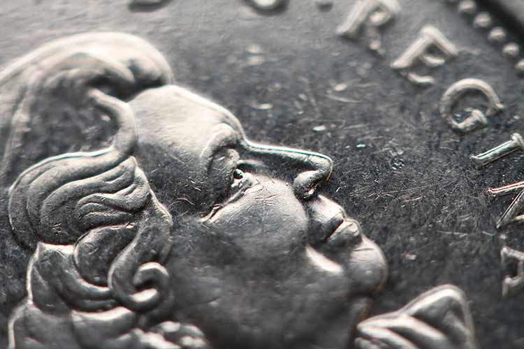 An extreme close-up of a Canadian quarter