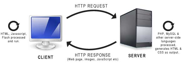 Client request, server response, with both client-side and server-side processing