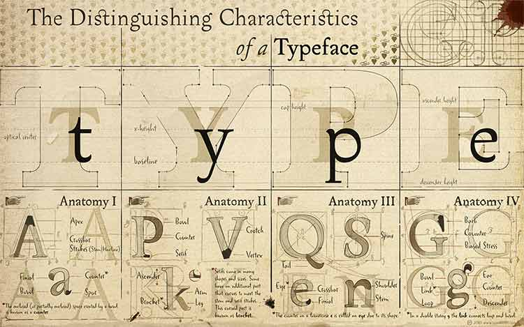 A poster of the components of a typeface